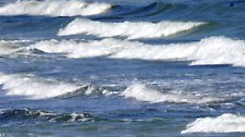 Die klare Flüssigkeit ist die Grundlage und der Ursprung allen Lebens.
