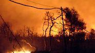 August 2007: Waldbrände in Griechenland