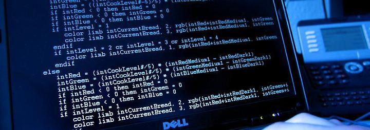Von gehackten Onlineüberweisungen bis zur digitalen Erpressung: 2011 gab es rund 60 000 Fälle von Cyberkriminalität in Deutschland. Foto: Oliver Berg
