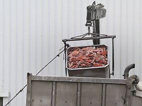 Tonnenweise muss Fleisch vernichtet werden, weil nicht klar ist, um welche Sorte es sich handelt.