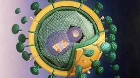 Modell eines HI-Virus.