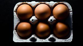 Lebensmittelskandale: Experten fordern mehr Kontrollen
