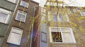 n-tv Ratgeber: Leben im schmalsten Haus Deutschlands