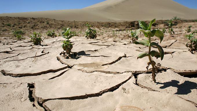 Ausgetrockneter Boden der Wüste in der Nähe der chinesischen Oasenstadt Dunhuang.