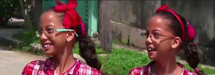 Trinkwasser oder Wunderbaum?: Zwillingsflut in Havanna gibt Rätsel auf