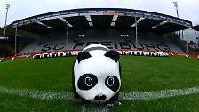 """Die Freiburger spielten zu Ehren des 50. Geburtstag des """"World Wide Fund for Nature"""" (WWF) mit dem berühmten Panda auf der Brust."""