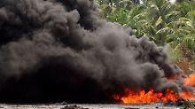 """""""Atemberaubende"""" Zahl von Öllecks in Nigeria: Amnesty wirft Shell Verschleierung vor"""
