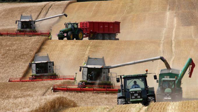Die Landwirte erwarten höhere Einnahmen - auch durch Preissteigerungen.