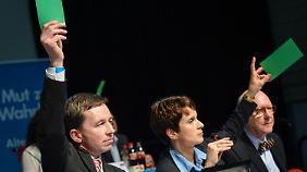 Abstimmung in Aschaffenburg. Die grünen Karten zeigen: Bernd Lucke und Co-Vorstandsmitglied Frauke Petry sind dafür.