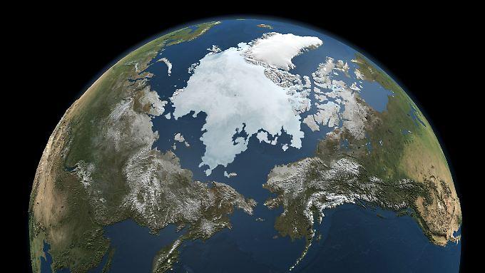 Die Klimaerwärmung trifft die Polarregionen besonders stark.