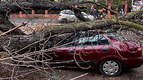 Deutschland teuer für Rückversicherer: 2013 weniger Schäden durch Naturkatastrophen