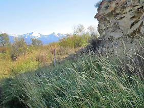 Aufnahme von Michael Waters: An der mit einem Stab markierten Stelle in West-Montana wurden die Überreste des Jungen gefunden.
