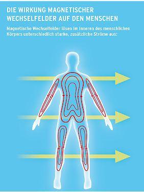Dass der Körper mit Strom arbeitet, ist ganz normal. Die magnetischen Felder, die mit Wechselstrom einhergehen, verursachen jedoch zusätzliche Ströme im Organismus. (Grafik: Bundesamt für Strahlenschutz)