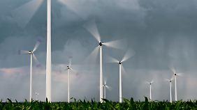 Nach Prokon geriet auch der Windkraft-Projektierer Windwärts ins Straucheln.