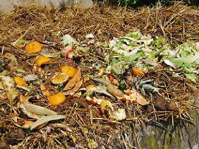 Alles, was auf dem Kompost landet, könnte zu Biokohle verarbeitet werden.