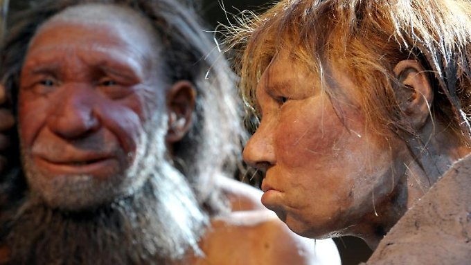 Der Neandertaler starb vor 30.000 Jahren aus - hinterließ dem modernen Menschen aber einige Gene.