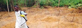 Ein Helfer steht auf einem Friedhof in Kailahun in Sierra Leone, im Dreiländereck mit Guinea und Liberia. Das Bild stammt von Mitte Juli.
