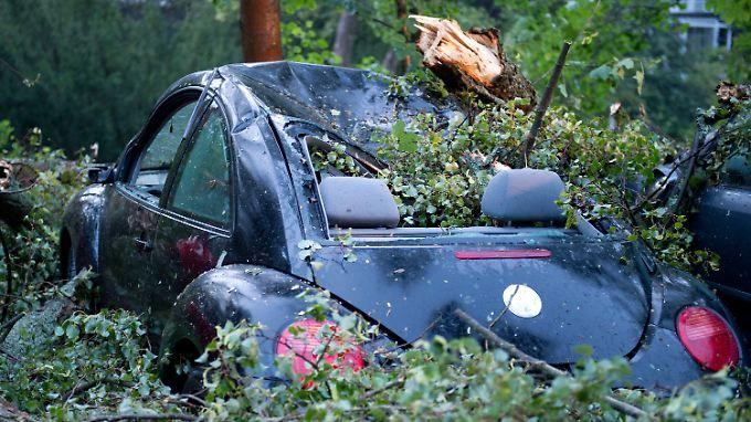 In Bad Schwalbach wurden Dutzende Bäume entwurzelt.