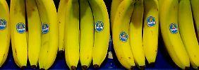 Durch die Orange gesprochen: Chiquitas Irland-Pläne werden torpediert