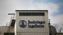 1000 Stellen fallen weg: Boehringer Ingelheim zückt den Rotstift