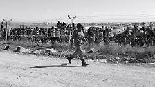 Massenflucht in die Türkei: Das Drama an der Grenze von Kobane