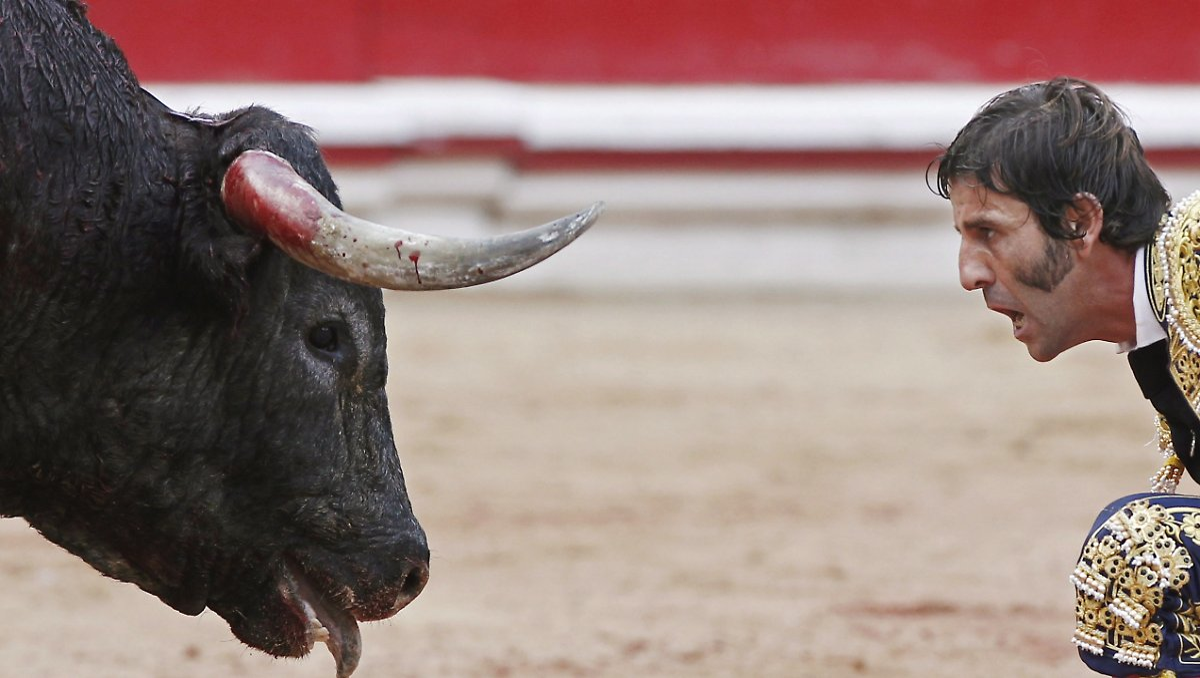 bulle spießt torero