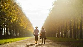 Goldener Oktober Anfang November: Rekordverdächtige Temperaturen erwartet