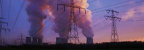 """""""Man kann nicht zeitgleich aus der Atomenergie und der Kohleverstromung aussteigen."""""""