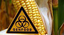 Umstrittene Inhaltsstoffe: Gentechnik bereits im Supermarktregal