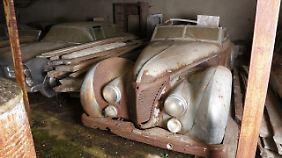 Dieses Talbot Lago T26 Cabriolet Saoutchik gehörte angeblich mal dem ägypischen König.