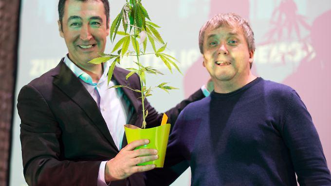 Wegen einer Hanfpflanze droht dem Grünen-Vorsitzenden Cem Özdemir mächtig Ärger mit der Justiz.