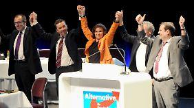 Etappensieg für Lucke: AfD schafft Dreierspitze ab