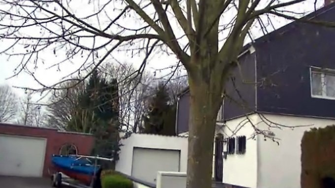 n-tv Ratgeber: Kanalschäden durch Bäume