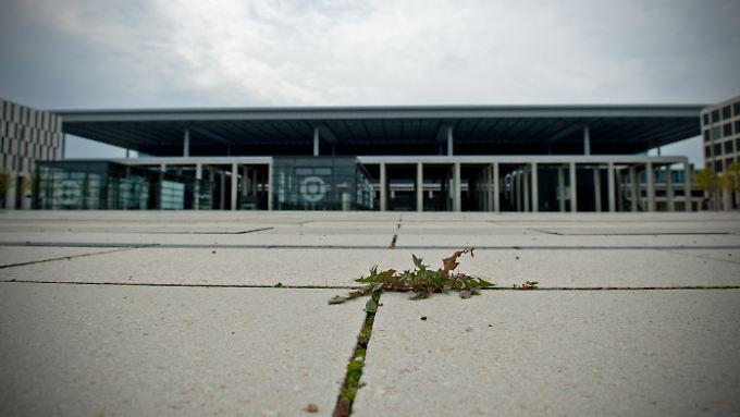 """Unkraut sprießt auf """"Deutschlands peinlichster Großbaustelle"""": Sachsen bringt Halle-Leipzig als Ausweichflughafen ins Gespräch."""
