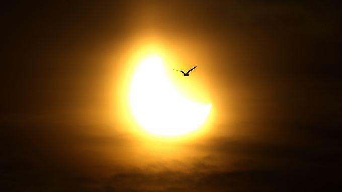 Ein faszinierendes Ereignis: Der Mond nimmt uns das Sonnenlicht.