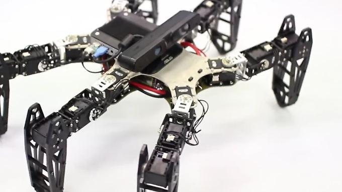 Durch Ausprobieren testet der Versuchs-Roboter nach einer Verletzung neue Bewegungsmuster, um zum Ziel zu kommen-