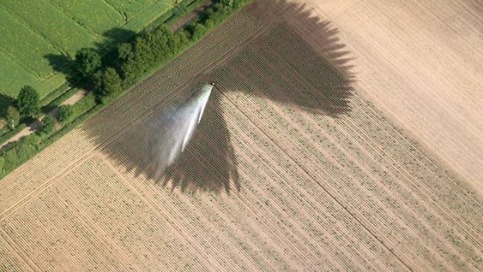 Auch die Trockenheit setzt den Landwirten zu.