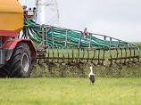 Zu viel Nitrat und Arzneispuren: Grundwasserqualität in Deutschland sinkt