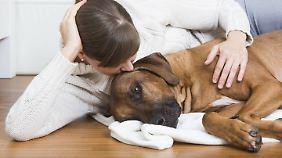 Hundehalter verwöhnen ihre Tiere mit Streicheleinheiten, doch nicht jeder Hund mag die auch.