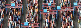 Ifo-Index stärker als gedacht: Deutsche Konjunktur trotzt Krisen