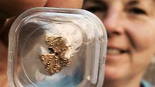 Fundsache, Nr. 1307: 1000 Jahre alte Goldperle in Schwerin