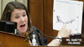 VW-USA-Chef vor dem Kongress: Abgeordnete liefern Kreuzverhör und Show