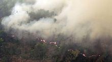CO2-Emissionen höher als in USA: Indonesien kämpft gegen 3200 Waldbrände
