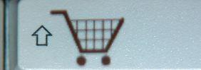 Wer im Internet einkauft, bekommt bei einigen Händlern die Sofortüberweisung als einzige kostenlose Bezahlart angeboten. Das ist laut einem Gerichtsurteil nicht zulässig. Foto: Jens Büttner