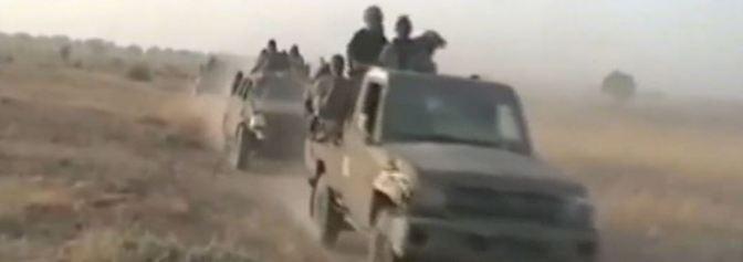 """Terrormiliz in Irak und Syrien: IS besteht aus """"cleveren Geheimdienstleuten und Militärs"""""""
