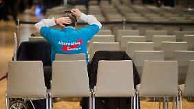 Umfrage-Dreikampf mit Grünen und Linken: Wahlforscher ermitteln den typischen AfD-Wähler