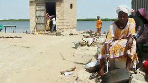 Versalzener Lebensraum: Steigender Meeresspiegel führt zur Flucht vieler Senegalesen