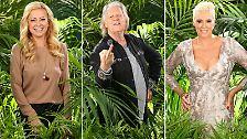 Heute fährt die 18 bis ins Dschungelcamp: Sie wollen die Gestrüppkrone!