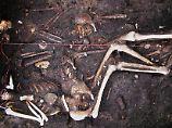 Todeserreger nicht nur eingeschleppt: Pest überstand in Europa Jahrhunderte