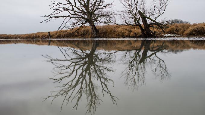 82 Prozent der Seen und Flüsse entsprechen nicht den EU-Vorgaben.